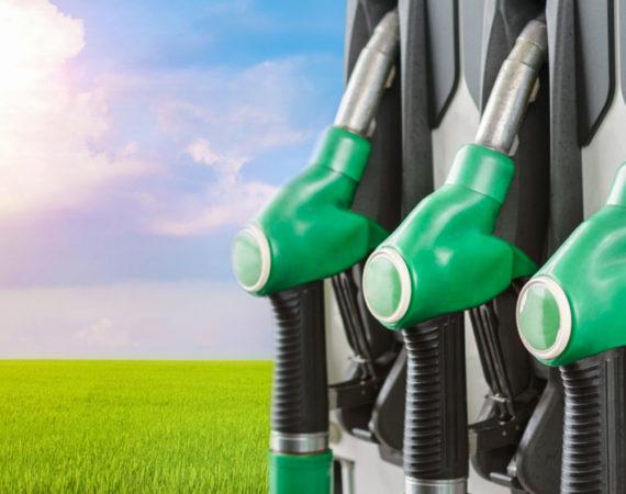 Projeto de biocombustível entre Galp e Petrobras acumulou prejuízos milionários